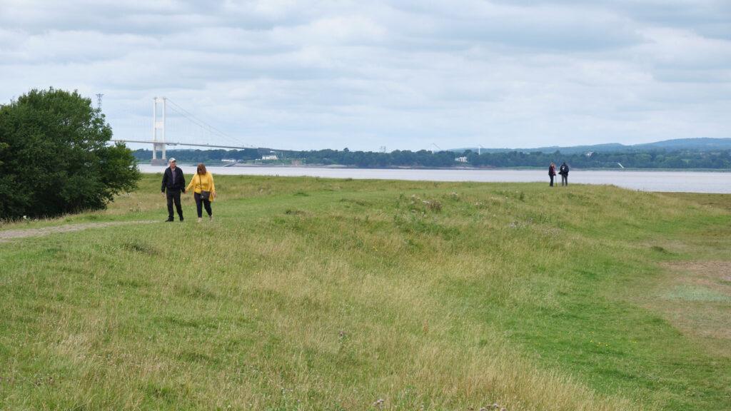 Severn Estuary View